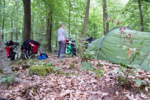 Wild camping in the Retz Forest