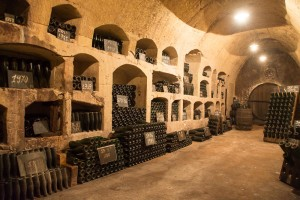 The cool of the champagne cellar was a welcome respite from the heat of the day