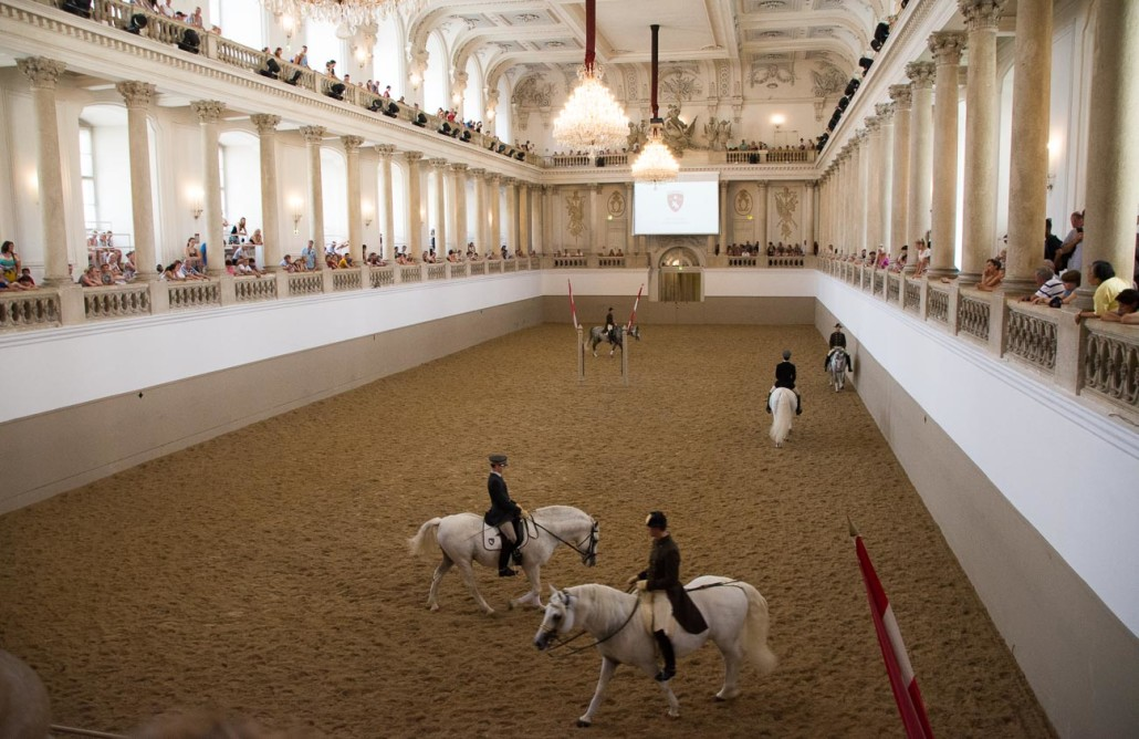 The Spanish Riding School in Vienna. Don't bother paying to watch the 'practice'!